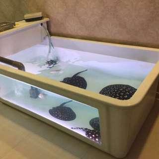 Fiber fish tank
