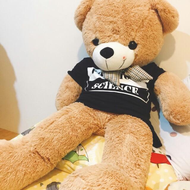 <特價>  (超)巨型黑T絲巾熊熊  玩偶    #新春八折