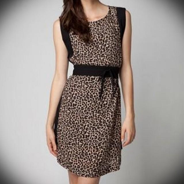Chic Leopard print Dress