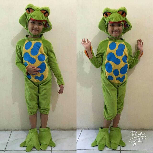 Cute Frog Costume