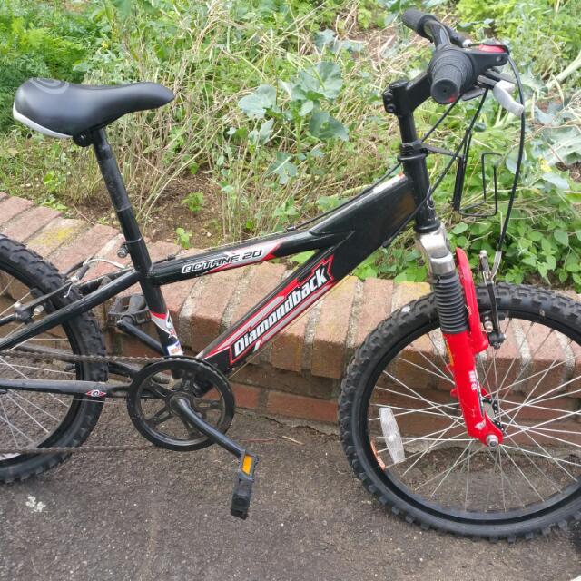 Diamondback Little Girls Mountain bike