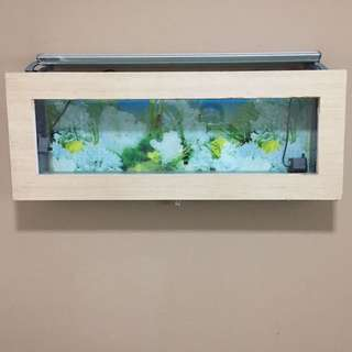 Wall mounted fish tank( customise) L107x 41w x15 thk  asking $100,and Dymax lights 2 tubes $20
