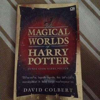 Magical worlds of Harry Potter