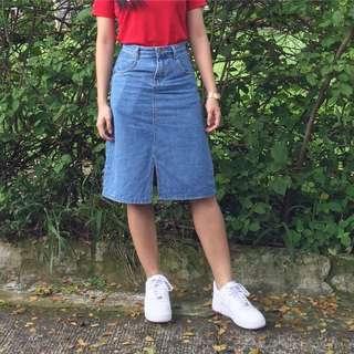Zara inspired skirt