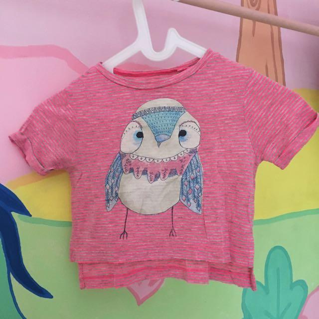 Gingersnap Owl t shirt