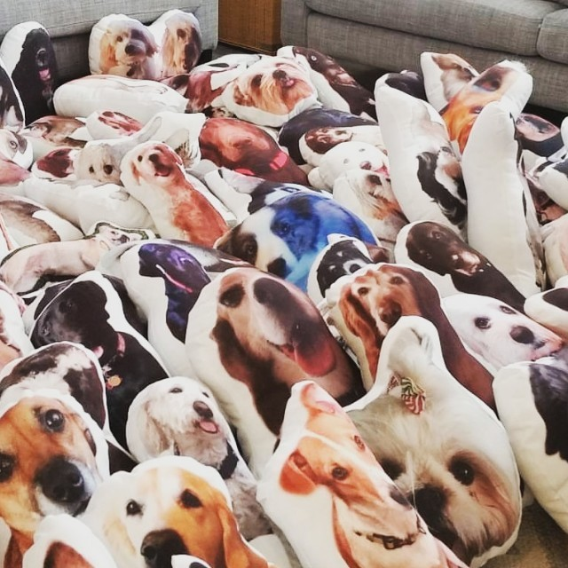 TRANSFORM YOUR PET INTO A PILLOW! CUSTOM PILLOW BASED ON YOUR PET'S PHOTO