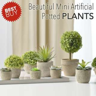 *In Stock!* Beautiful Artificial Decorative Plant. Fake / Faux Potted Green Plants. With Rustic Concrete Looking Grey Pot.