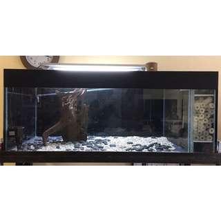 152cm(L) x 69cm(B) x 61cm(H) Fish Tank w/ Wrought Iron Stand