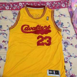 NBA SWINGMAN JERSEY (CURRY ALL STAR 2016) and (LEBRON Alternate jersey)