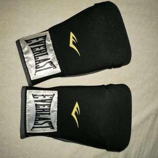 Everlast boxing gloves level 1