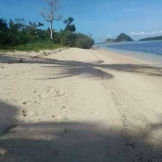1 hectare titled beach property in Busuanga Palawan