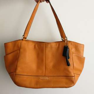 Coach Tote Bag (Medium)