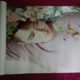 Exo d.o kyungsoo poster (exo the war poster)