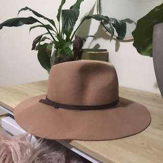 Wide Brimmed Fedora Style Hat