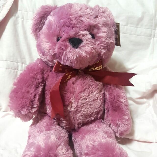 紫紅色泰迪熊