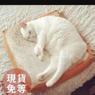 🚚 療癒系貓咪土司墊