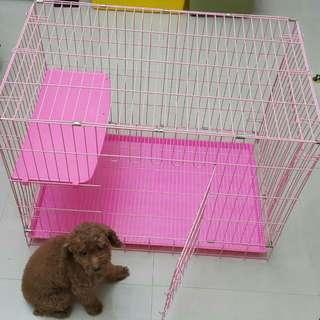 *降價求售*9.5新貓籠(贈跳板+喝水罐)