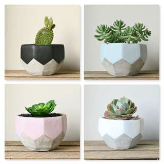 Large Painted Geometric Faceted Concrete Planter