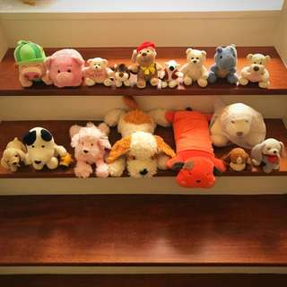 Puppies, dogs, teddy bears soft toys