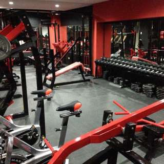 Gym Business / Gym Equipment