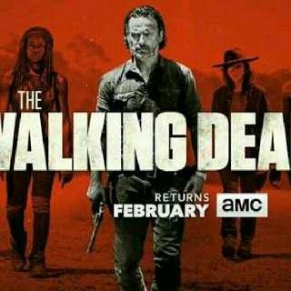 Walking Dead S1- S6