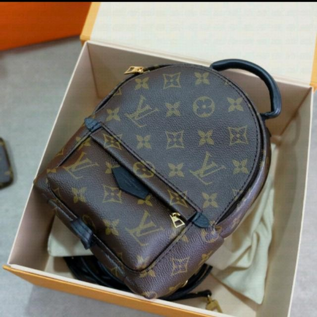 e37cff4e07fb BNIB Authentic Louis Vuitton (LV) Palm Spring Mini Backpack
