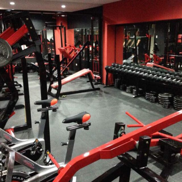 Gym Business / Gym Equipment