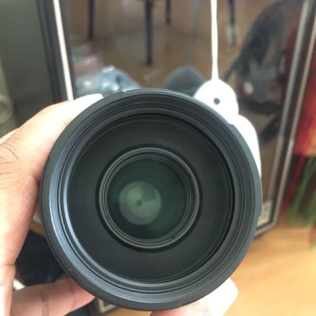 Sigma APO DG 70-300 macro
