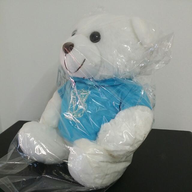 White Teddy Bear - Commemorating School Anniversary