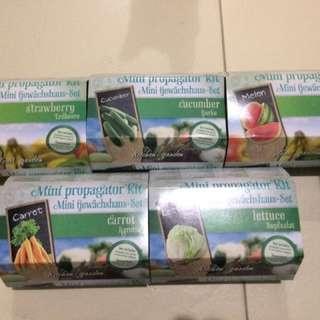 Mini Propagator Kit Kitchen Garden