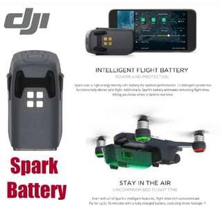 DJISpark Battery - Ready Stock! Local DJI Warranty! 100% Original & Authentic