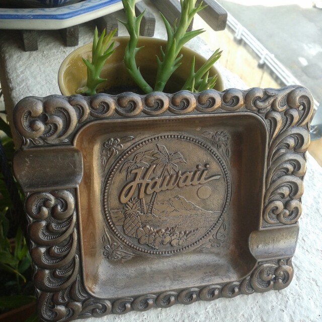Hawaii Ashtray Beauty