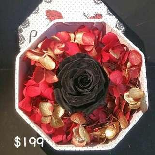 神秘黑玫瑰保鮮花