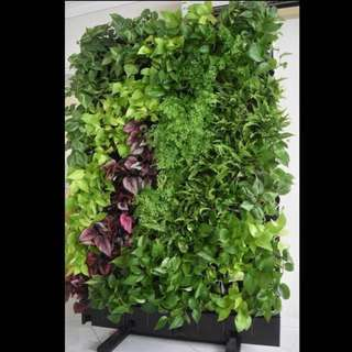 Movable Vertical Plant Stand