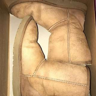 REDUCED Authentic Classic Short Uggs (Tan)