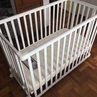 Baby cot and orthopedic mattress 60cm*120cm in perfect condition
