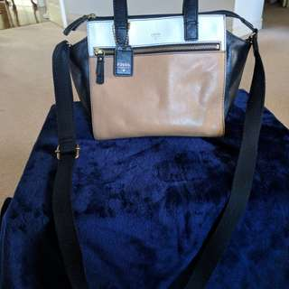 Fossil Tessa Satchel with Crossbody