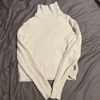 Brandy Melville Turtleneck