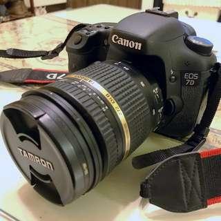 CANON EOS 7D (公司貨)附鏡頭、小小白、閃光燈