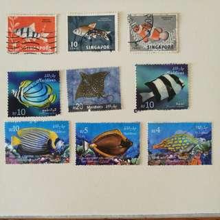 Maldives & 1962 Singapore fish stamps