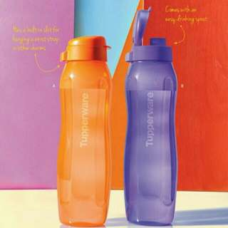 Buy 1 Take 1 Eco Bottle 1 Liter