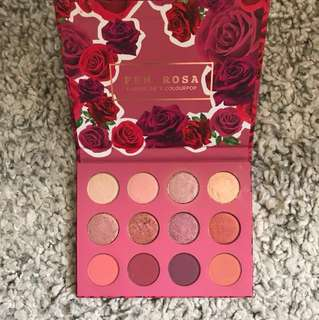 Colourpop fem x Rosa eye shadow palette