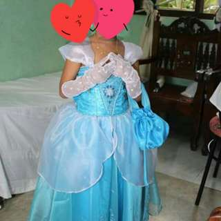 Cinderella costume with accessories