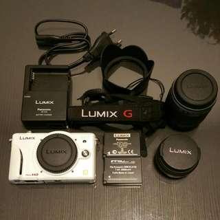 Panasonic Lumix DMC-GF2W