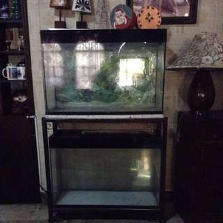 Aquarium (2 Tiered) With Steel Stand