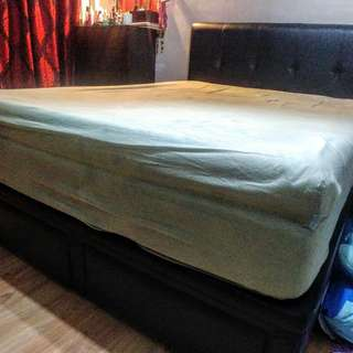 Queen Bed Frame Storage With Mattress (Nightingale Spinal Royal)