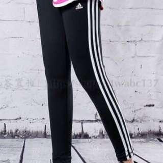 adidas pants 緊身褲 打底褲