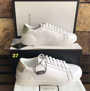 GUCCI authentic Sneakers