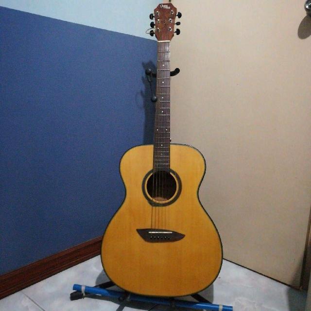 Gopher Wood Guitar