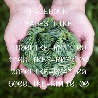 SERVIS FB PAGES LIKE